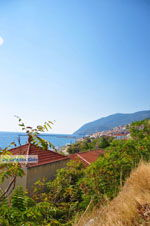 GriechenlandWeb.de Plomari | Lesbos Griechenland | GriechenlandWeb.de 40 - Foto GriechenlandWeb.de