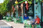 Plomari | Lesbos Griekenland | De Griekse Gids 56 - Foto van De Griekse Gids