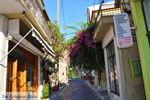 Plomari | Lesbos Griekenland | De Griekse Gids 61 - Foto van De Griekse Gids