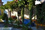 Pigadakia bij Kato Tritos | Lesbos | Griekse Gids 5 - Foto van De Griekse Gids