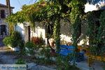 Pigadakia bij Kato Tritos | Lesbos | Griekse Gids 6 - Foto van De Griekse Gids