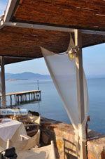 Molyvos Lesbos | Griekenland | De Griekse Gids 151 - Foto van De Griekse Gids
