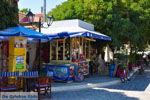 Agia Paraskevi Lesbos | Griekenland | De Griekse Gids 11 - Foto van De Griekse Gids