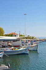Skala Kallonis Lesbos | Griechenland | GriechenlandWeb.de 30 - Foto GriechenlandWeb.de