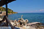 GriechenlandWeb.de Mistegna - Skala Mistegna | Lesbos | GriechenlandWeb.de 11 - Foto GriechenlandWeb.de