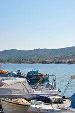 GriechenlandWeb.de Mistegna - Skala Mistegna | Lesbos | GriechenlandWeb.de 12 - Foto GriechenlandWeb.de