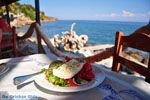 GriechenlandWeb.de Mistegna - Skala Mistegna | Lesbos | GriechenlandWeb.de 18 - Foto GriechenlandWeb.de