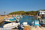 Sykaminia - Skala Sykaminia | Lesbos | GriechenlandWeb.de 7 - Foto GriechenlandWeb.de