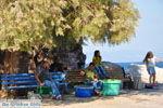 Sykaminia - Skala Sykaminia | Lesbos | De Griekse Gids 10 - Foto van De Griekse Gids