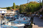Sykaminia - Skala Sykaminia | Lesbos | De Griekse Gids 11 - Foto van De Griekse Gids