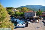GriechenlandWeb.de Sykaminia - Skala Sykaminia | Lesbos | GriechenlandWeb.de 16 - Foto GriechenlandWeb.de