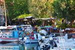 Sykaminia - Skala Sykaminia | Lesbos | De Griekse Gids 18 - Foto van De Griekse Gids