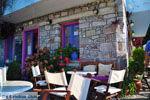 GriechenlandWeb.de Sykaminia - Skala Sykaminia   Lesbos   GriechenlandWeb.de 27 - Foto GriechenlandWeb.de
