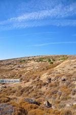 Versteende woud Sigri | Lesbos Griechenland | Foto 9 - Foto GriechenlandWeb.de