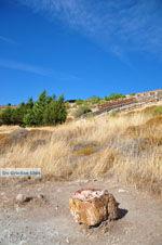 Versteende woud Sigri | Lesbos Griechenland | Foto 24 - Foto GriechenlandWeb.de