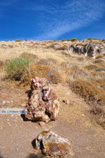 Versteende woud bij Sigri | Lesbos Griekenland | Foto 33 - Foto van De Griekse Gids