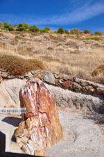 Versteende woud bij Sigri | Lesbos Griekenland | Foto 45 - Foto van De Griekse Gids