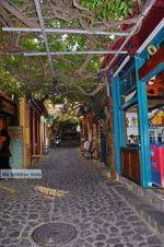 Molyvos Lesbos | Griekenland | De Griekse Gids 160 - Foto van De Griekse Gids