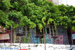 Molyvos Lesbos | Griekenland | De Griekse Gids 183 - Foto van De Griekse Gids