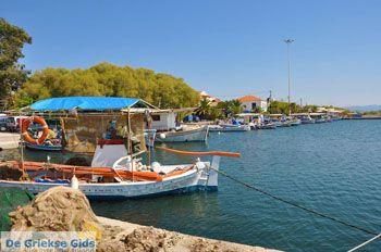 Skala Kallonis Lesbos | Griekenland | De Griekse Gids 29 - Foto van De Griekse Gids