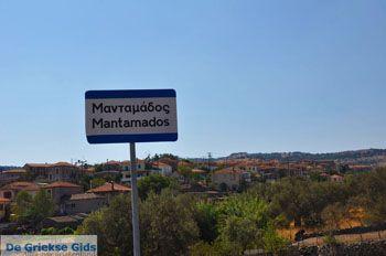 Mantamados Lesbos   Griekenland   De Griekse Gids 3 - Foto van De Griekse Gids