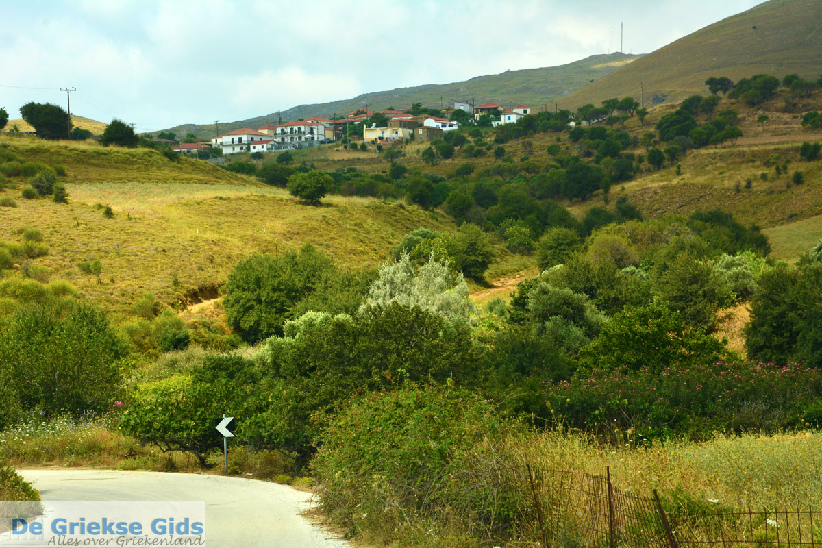 foto Dafni Limnos (Lemnos) | Griekenland | Foto 1