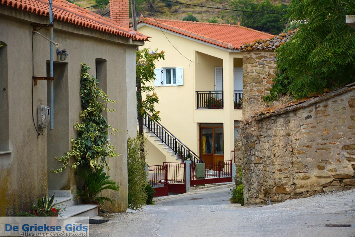 foto Dafni Limnos (Lemnos) | Griekenland | Foto 8