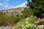 GriechenlandWeb.de Agios Dimitrios Limnos (Lemnos)  | Griechenland | Foto 5 - Foto GriechenlandWeb.de