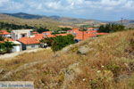 GriechenlandWeb.de Agios Dimitrios Limnos (Lemnos)  | Griechenland | Foto 12 - Foto GriechenlandWeb.de