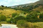 Dafni Limnos (Lemnos) | Griekenland | Foto 1 - Foto van De Griekse Gids