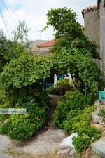 GriechenlandWeb.de Dafni Limnos (Lemnos) | Griechenland | Foto 5 - Foto GriechenlandWeb.de