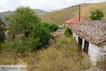 GriechenlandWeb.de Dafni Limnos (Lemnos) | Griechenland | Foto 6 - Foto GriechenlandWeb.de
