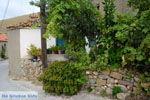 Dafni Limnos (Lemnos) | Griekenland | Foto 7 - Foto van De Griekse Gids