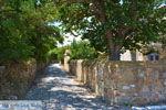 GriechenlandWeb.de Livadochori Limnos (Lemnos) | Griechenland | Foto 13 - Foto GriechenlandWeb.de