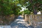 Livadochori Limnos (Lemnos) | Griekenland | Foto 14 - Foto van De Griekse Gids