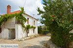 Sardes Limnos (Lemnos) | Griekenland | Foto 2 - Foto van De Griekse Gids