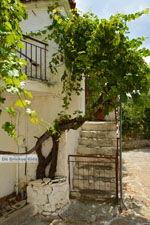 Sardes Limnos (Lemnos) | Griekenland | Foto 10 - Foto van De Griekse Gids