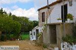 GriechenlandWeb.de Sardes Limnos (Lemnos) | Griechenland | Foto 12 - Foto GriechenlandWeb.de
