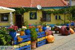 GriechenlandWeb.de Sardes Limnos (Lemnos) | Griechenland | Foto 16 - Foto GriechenlandWeb.de