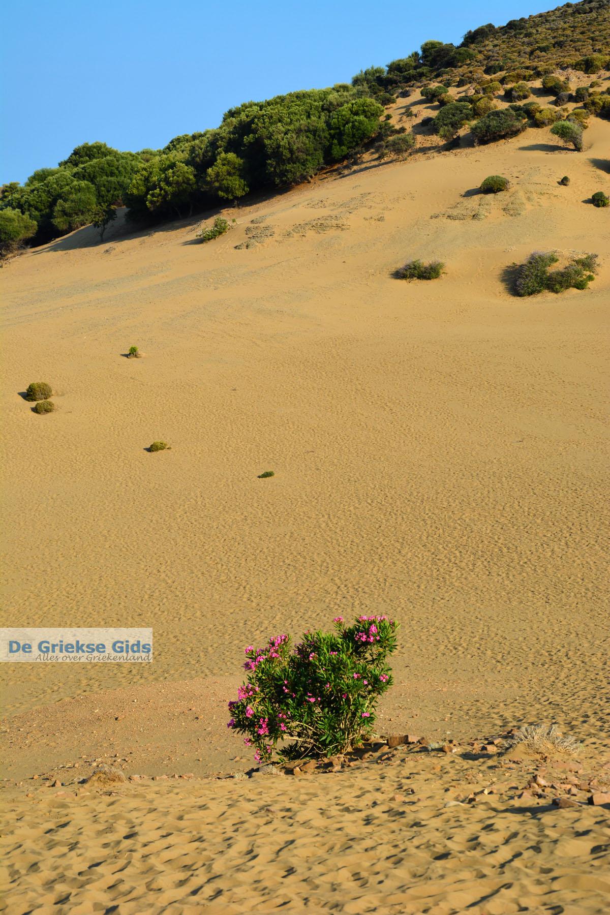 foto Amothines woestijn bij Katalakos Limnos (Lemnos)   Foto 37