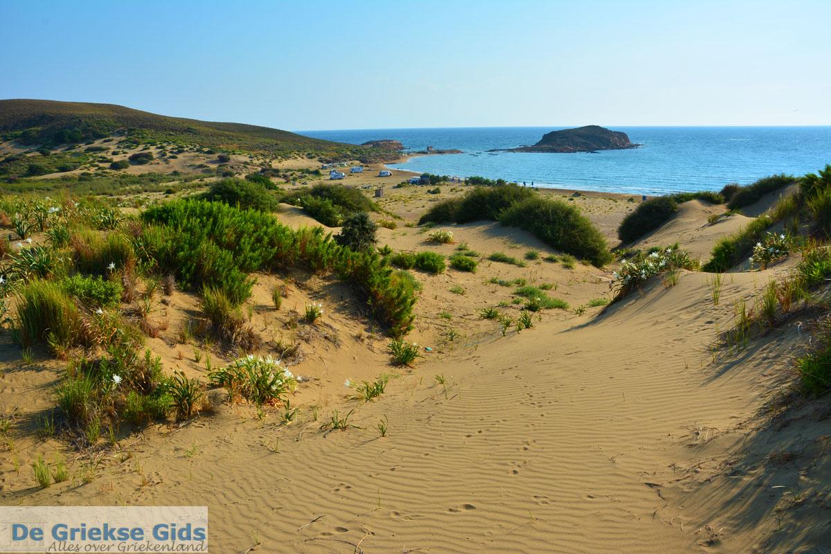 foto Bij Gomati en woestijn Amothines Katalakos Limnos (Lemnos) foto 29