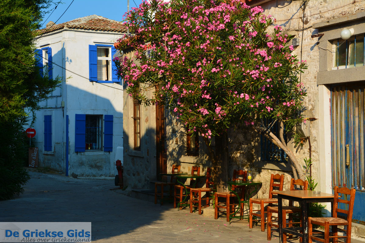 foto Kontias Limnos (Lemnos) | Griekenland foto 30