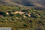GriechenlandWeb.de Amothines woestijn Katalakos Limnos (Lemnos) | Foto 12 - Foto GriechenlandWeb.de