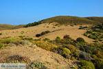 Amothines woestijn bij Katalakos Limnos (Lemnos) | Foto 14 - Foto van De Griekse Gids