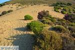 Amothines woestijn bij Katalakos Limnos (Lemnos) | Foto 20 - Foto van De Griekse Gids