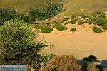 Amothines woestijn bij Katalakos Limnos (Lemnos) | Foto 39 - Foto van De Griekse Gids