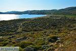 GriechenlandWeb.de Bij Gomati und woestijn Amothines Katalakos Limnos (Lemnos) foto 9 - Foto GriechenlandWeb.de