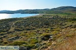 Bij Gomati und woestijn Amothines Katalakos Limnos (Lemnos) foto 10 - Foto GriechenlandWeb.de