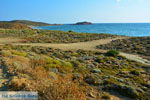 Bij Gomati und woestijn Amothines Katalakos Limnos (Lemnos) foto 11 - Foto GriechenlandWeb.de
