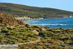 GriechenlandWeb.de Bij Gomati und woestijn Amothines Katalakos Limnos (Lemnos) foto 12 - Foto GriechenlandWeb.de
